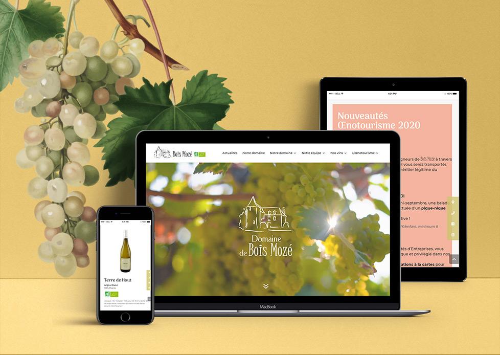 Site internet du Domaine de Bois MozéSite internet du Domaine de Bois Mozé