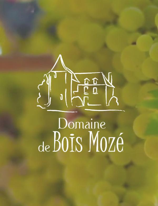 Site internet du Domaine de Bois Mozé