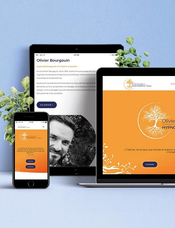 Site internet Olivier Bourgouin
