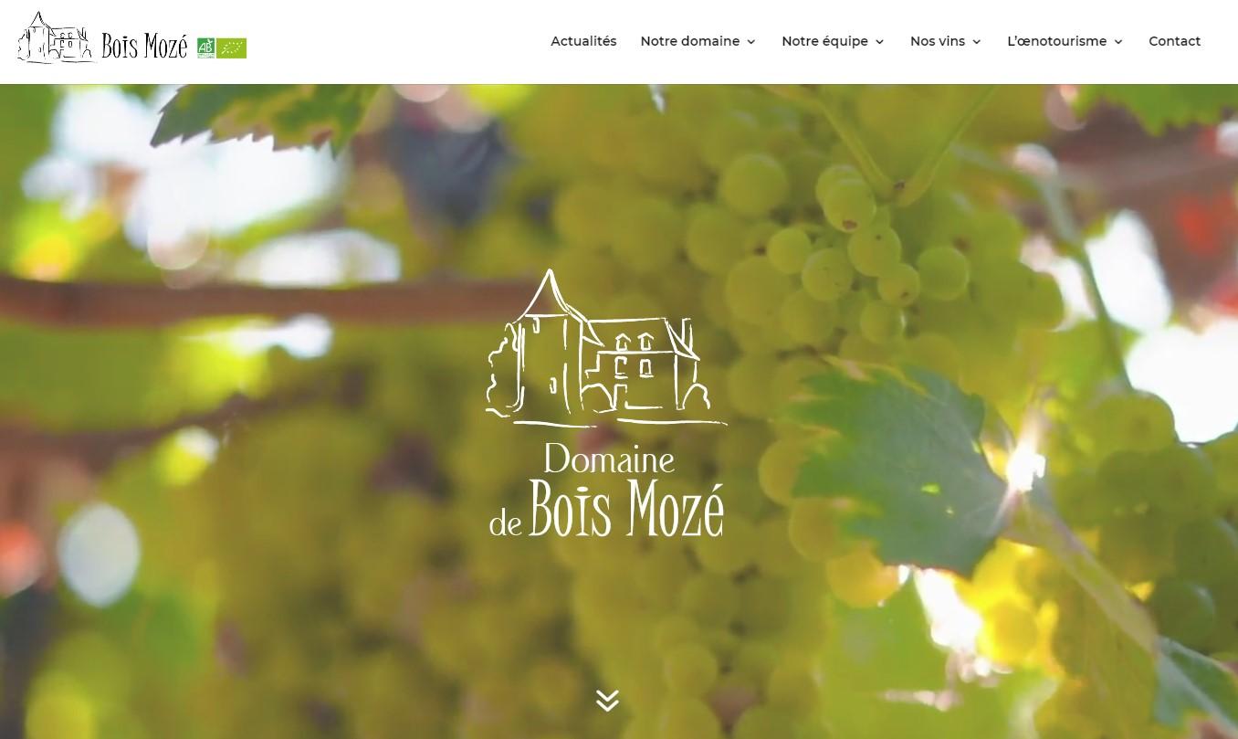 Écran d'accueil du site de Bois Mozé