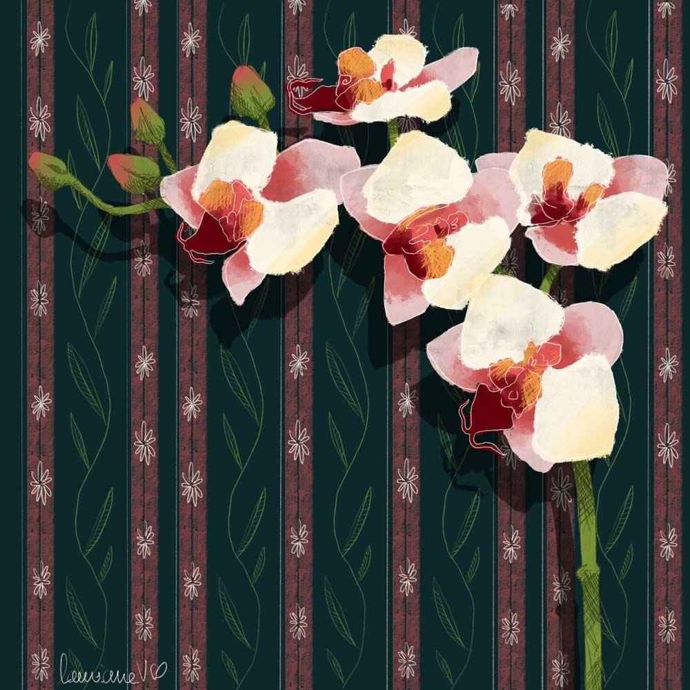 They draw and garden - bouquet détail - Lauriane Vincent - Illustration non libre de droit